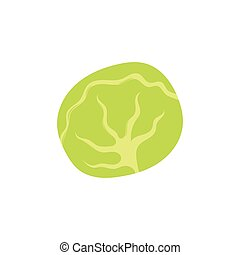 Cabbage icon, cartoon style