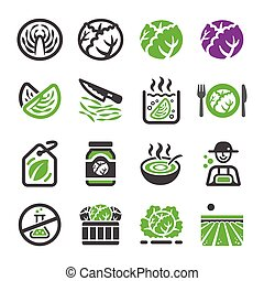 cabbage icon set