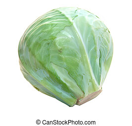 Cabbage isolated on a white background.