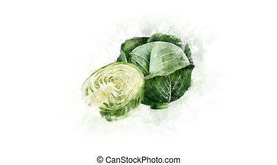 Cabbage on a transparent background - Animated image of...