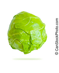 cabbage on a white background, isolated