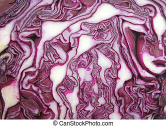 cabbage red macro texture