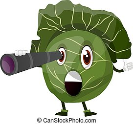Cabbage with a spyglass, illustration, vector on white background.