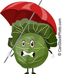 Cabbage with an umbrella, illustration, vector on white background.