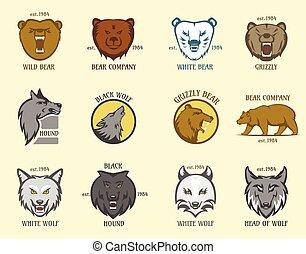 cabeça, animal, lobo, vetorial, illustration., emblema, urso