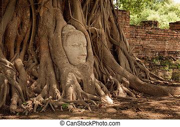 cabeça, arenito, buddha