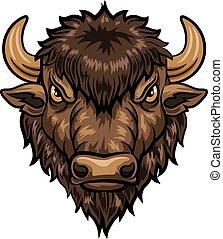cabeça, bisonte, ilustração, mascote