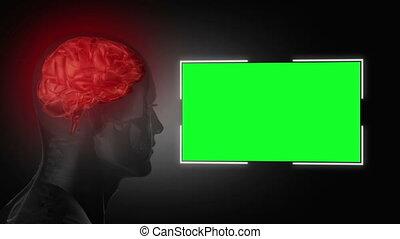 cabeça humana, perto, um, verde, tela