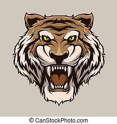 cabeça, ilustração, tiger, vetorial, tiger., rugindo, mascote