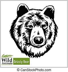 cabeça, -, pardo, mascote, vetorial, ilustração, estilo, monocromático, urso