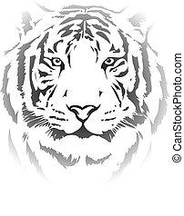 cabeça tigre, pretas, interpretation4