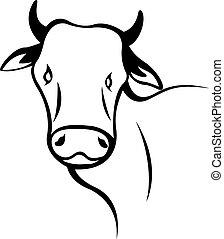 cabeça, vaca