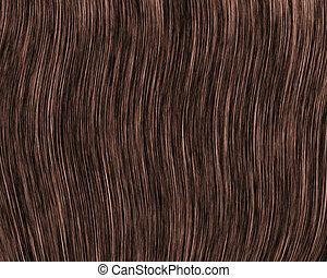 cabelo, closeup