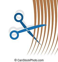 cabelo, tesouras, corte
