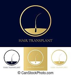 cabelo, transplante, ícone