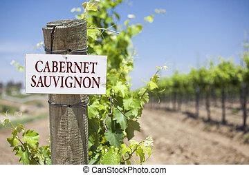 Cabernet Sauvignon Sign On Vineyard Post