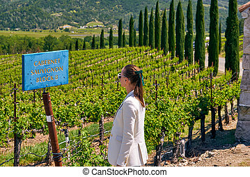 Cabernet Sauvignon wine grape variety sign in vineyard
