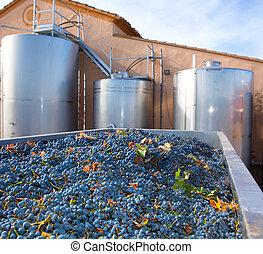 cabernet sauvignon, winemaking, con, uvas, y, tanques