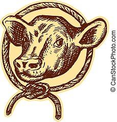 cabeza, aguafuerte, vaca, soga, toro, círculo