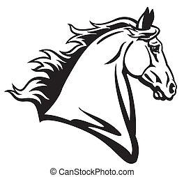 cabeza, caballo