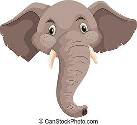 cabeza, elefante, fondo blanco, aislado