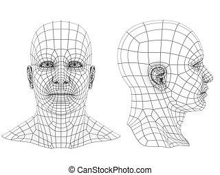 cabeza, humano, 3d