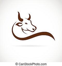 cabeza, imagen, vector, plano de fondo, toro, blanco