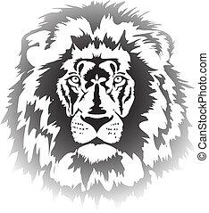 cabeza, león, gradiente