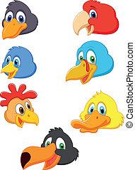 cabeza, pájaro, colección, caricatura