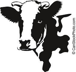cabeza, vector, ilustración, vaca