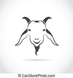 cabeza, vector, imagen, goat