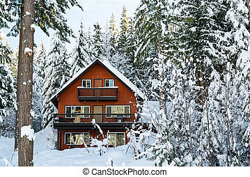 Cabin in Woods Winter with Snow