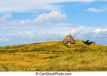 Lonesome cabin at the Danish coast