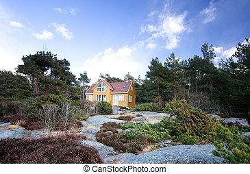 Cabin - A fancy cabin in the forest on rocks