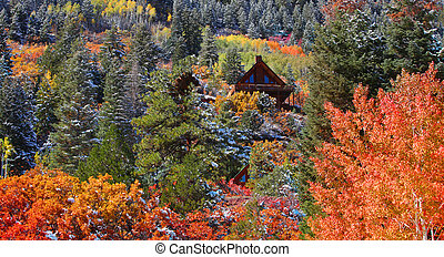 Cabins on the hill