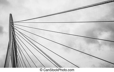 Cable stayed bridge - Modern shaped cable stayed bridge with...