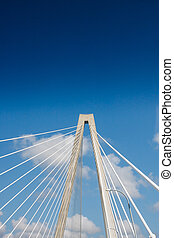 Cables on White Suspension Bridge