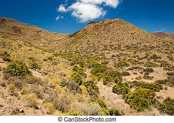 Cabo de Gata National Park, Andalusia, Spain