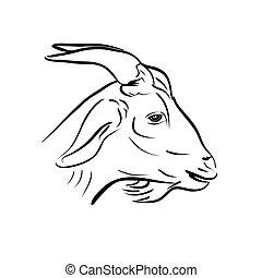 cabra, cabeça, arte, linha, branca