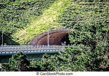 cabrillo highway tunnel near california pacific coast