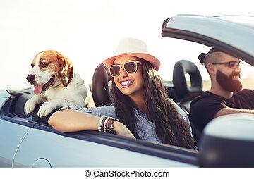 cabriolet, couple, jeune, conduite, chien