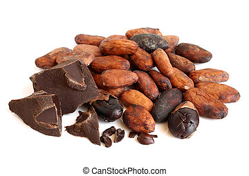 Cacao beans and chocolate on a white background