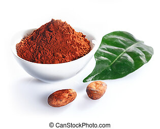 Cacao beans, leaf and cacao powder isolated on white