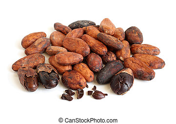 Cacao beans on a white background