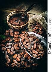 cacao, (cacao), haricots