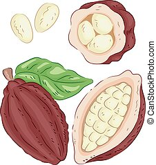 cacao, elementos, fruits