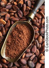 cacao, frijoles, y, retro, pala, con, cacao, polvo