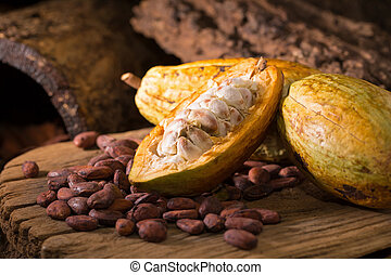 Cacao fruit, raw cacao beans, Cocoa pod on wooden...