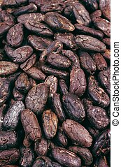 cacao, haricots, -, fond