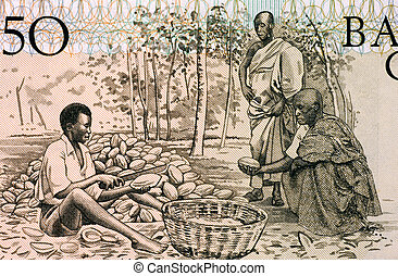 cacao, homens, potes, rachar